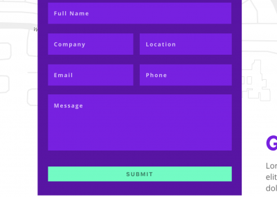Gravity Forms CSS Styling – Misc. Looks